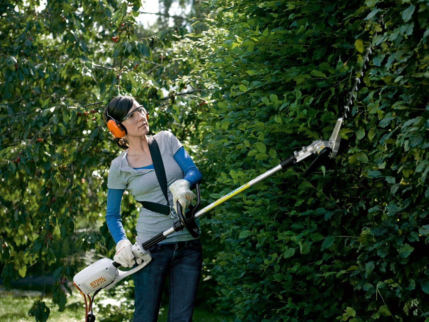 Hedge trimmers and long reach hedge trimmers